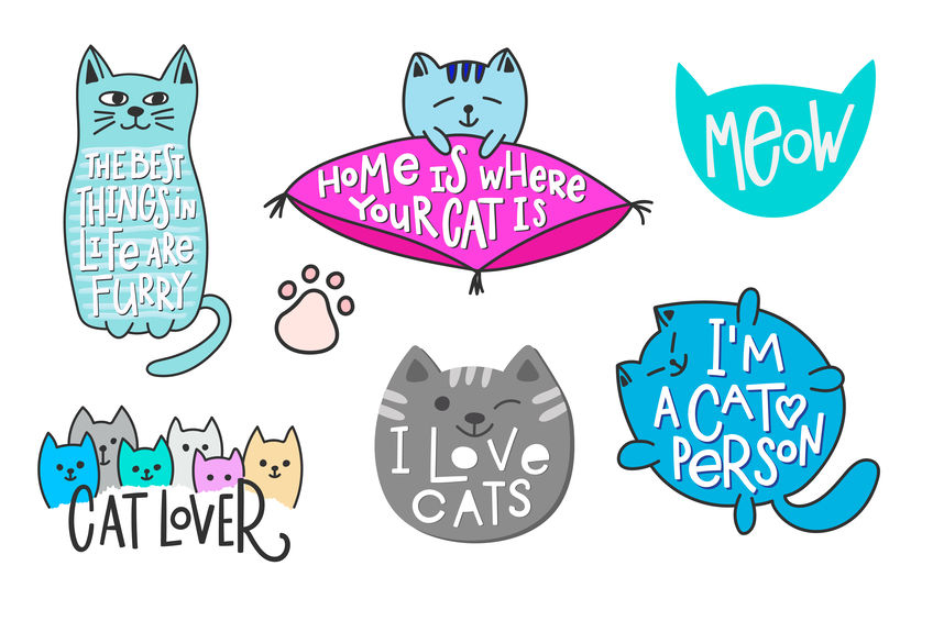 10 signs you are a Cat-oholic