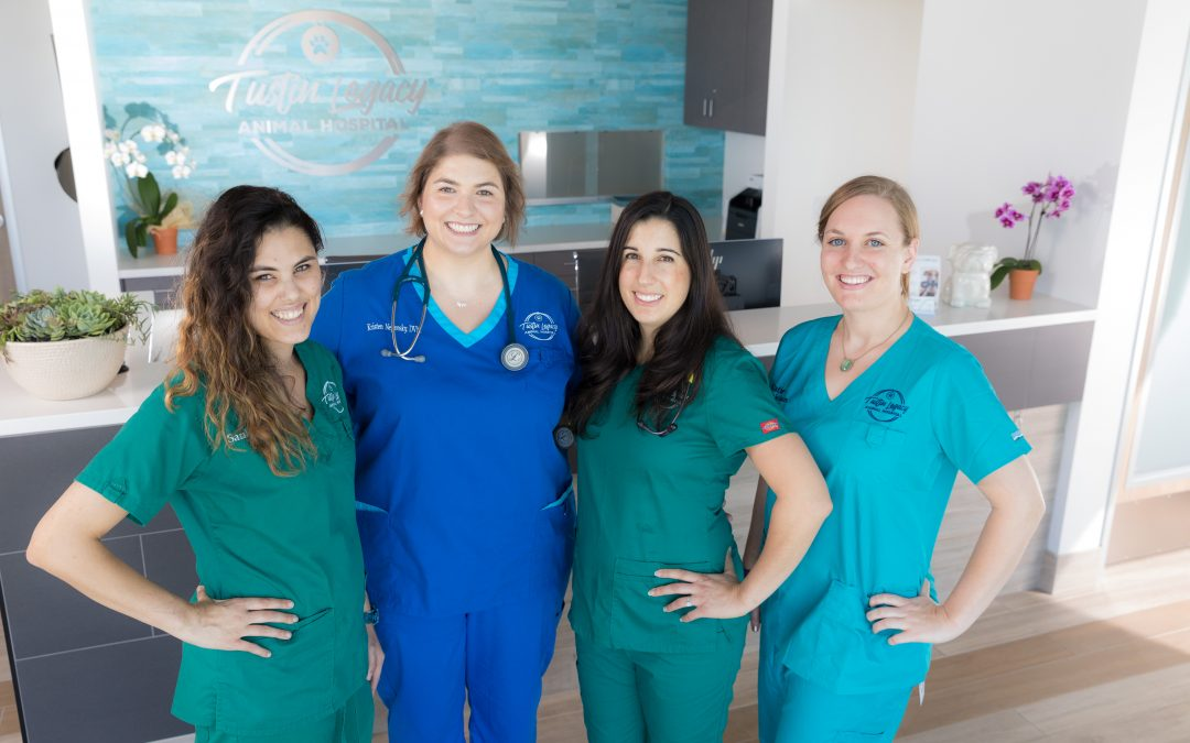 Meet the fabulous female founders of Tustin Legacy Animal Hospital